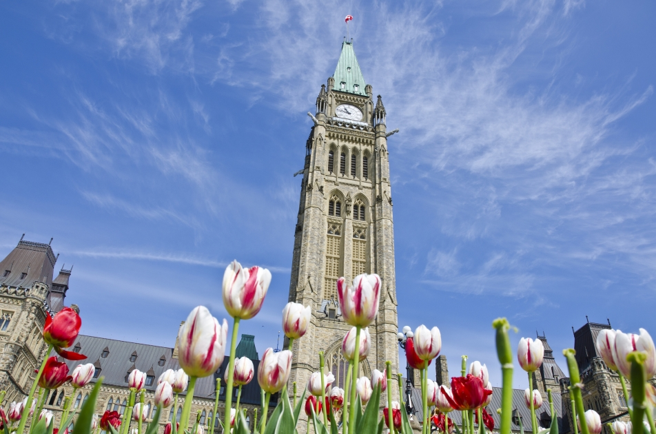 Conference Board of Canada report calls for raising Canada's immigration rate